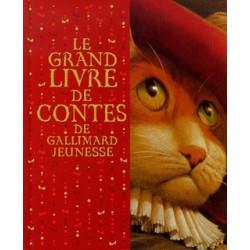 Grand livre de contes